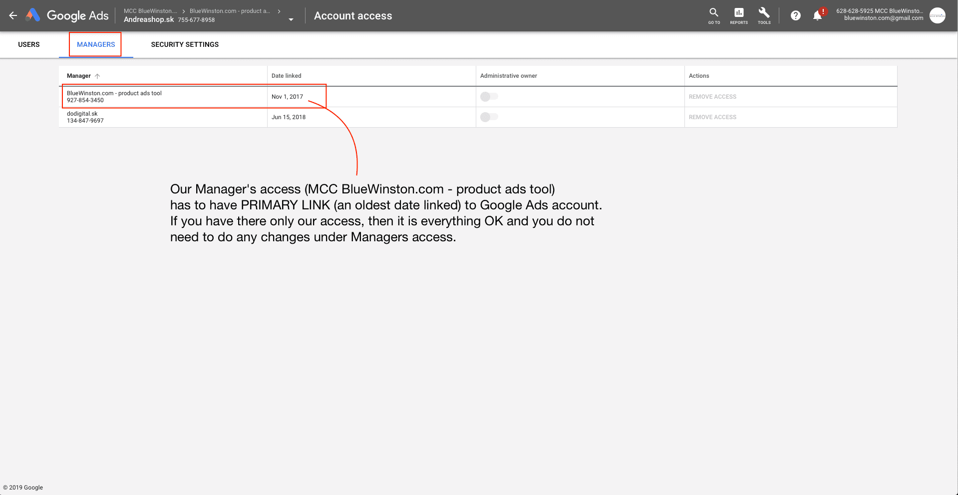 Managers account access in Google Ads